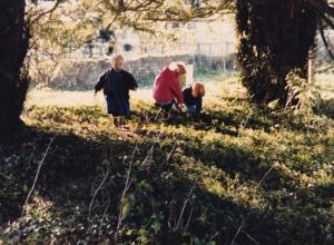 outside in trees